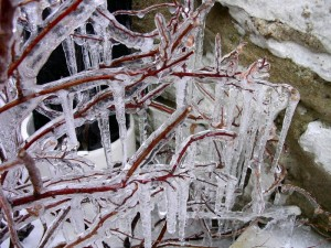 Sionra Icicles